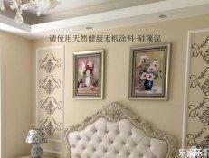 硅藻泥墙面,墙面装饰材料