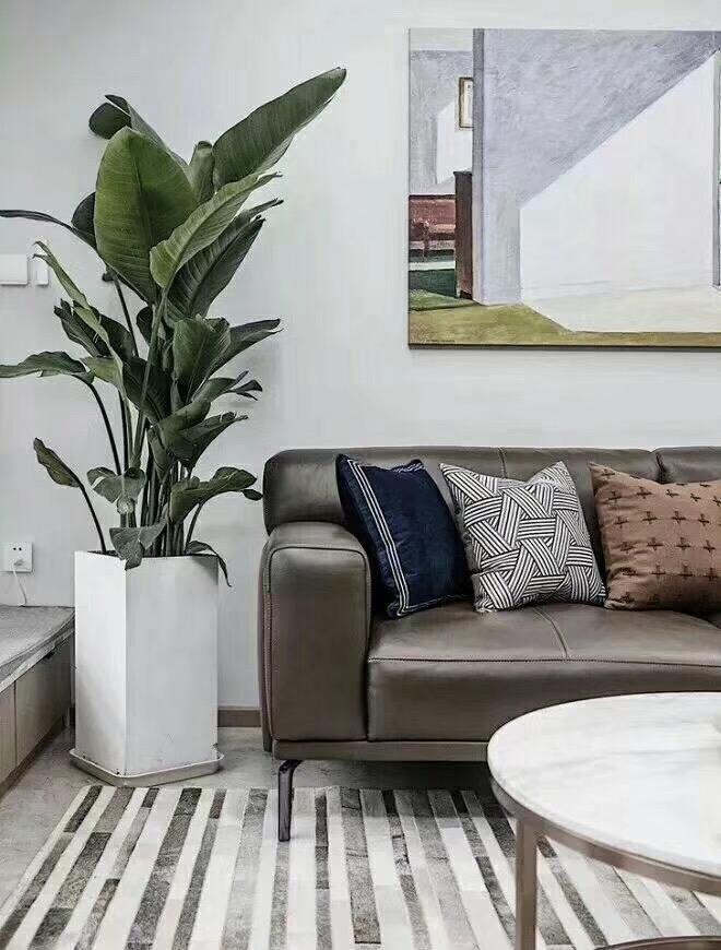株洲110平米现代简约客厅植物装饰图